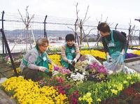 園芸サークル ボランティア