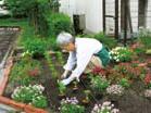 園芸サークルでは院内緑化に貢献 画像