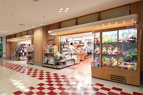 チアマスティ2号店