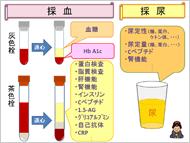 糖尿病教室のスライド